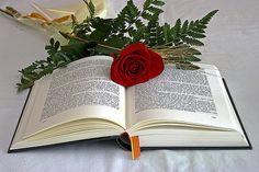 Feliz Día del Libro y Feliz día de San Jorge, ¿queréis saber más sobre esta festividad? Os lo contamos todo en nuestro blog de IMF. http://www.imf-formacion.com/blog/corporativo/_agenda/dia-de-libros-rosas-y-dragones/