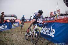 Toon Aerts the CX European Champ, Cyclocross DVV Verzekeringen Trofee #5 - Scheldecross, Antwerp   by Balint Hamvas, cyclephotos.co.uk