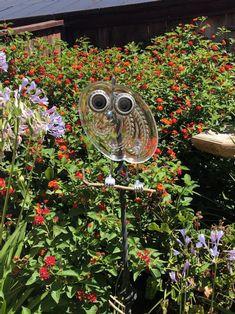 Bottle Torch, Cardboard Shipping Boxes, Garden Owl, Window Shelves, Cute Owl, Glass Garden, Garden Gifts, Yard Art, Bird Houses