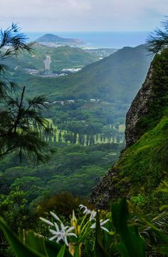 As well as great restaurants and clubs, shopping, and world-famous beaches Honolulu, HawaiiHonolulu also has great hiking!