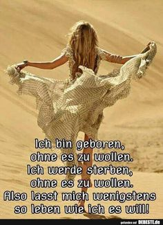 I was born without wanting it. I'm going to die without wanting it. So let me live as I want it at least! Also lasst mich wenigstens so leben wie ich es will ! What Is Love, Love You, Motivational Quotes, Inspirational Quotes, True Words, Animals And Pets, Funny Pictures, Thoughts, Humor