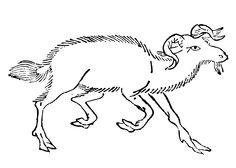南山經-䍺 - 南山經 - 维基百科,自由的百科全书