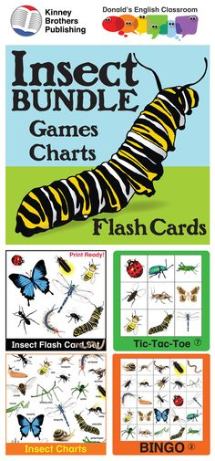 This bundle brings a treasure trove of insect activities together including Insect Bingo, Tic-Tac-Toe, and an I Have/Who Has Activity. Insect Flash Cards and Insect Charts give you tools for vocabulary activities and interactive notebooks! Be sure to check out the previews for each item!