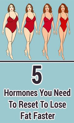 5 Hormones You Need To Reset To Lose Fat Faster Here are 5 cases of hormonal imbalances that are the main reasons why you cannot defeat the battle with your body fat. Losing Weight Tips, Best Weight Loss, Weight Loss Tips, Healthy Facts, Get Healthy, Healthy Man, Lose Body Fat, How To Lose Weight Fast, Foods To Lose Weight