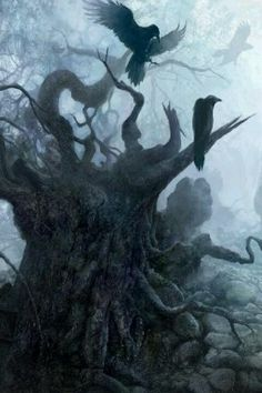 Since returning from the islands she had dreams about mandrone trees. Once or twice she swore that she heard ravens.