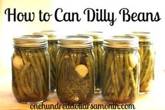 Canning 101 - How to Can Dilly Beans - One Hundred Dollars a Month