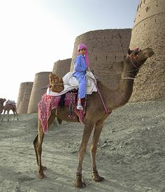 Camel boy, Punjab, Pakistan