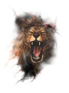 Lion Cub Tattoo, Cubs Tattoo, Lion Tattoo Design, Wild Animal Wallpaper, Lion Wallpaper, The Animals, Lion Tattoo Sleeves, Lion Photography, Kitten Drawing