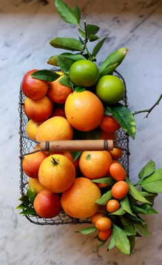 Beautiful and easy citrus fruit salad recipe for winter or spring brunch, or meal prep. Mimosa citrus salad option with prosecco! Sour Fruit, Fruit And Veg, Fruits And Vegetables, Citrus Recipes, Fruit Salad Recipes, Tropical Fruit Salad, Dressing For Fruit Salad, Fruits Photos, Rainbow Fruit