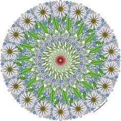 daisies_exam.jpg (1200×1200)