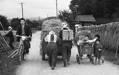 農道. Country road. Bike. Cart. Baby carriage. Japan. 1956.