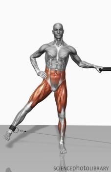 cable leg abduction: works abdominals and legs