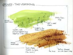 Fan brush for watercolor - grass Watercolor Painting Techniques, Watercolor Projects, Watercolor Tips, Watercolor Brushes, Watercolour Tutorials, Watercolor Landscape, Painting Tips, Watercolour Painting, Watercolor Cards
