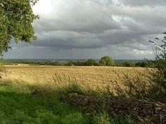 Inspiration for farmland near town. (Original image by tpb Rhosme, fields near Great Rissington.)