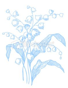 Lily of the Valley Royalty Free Stock Vector Art Illustration
