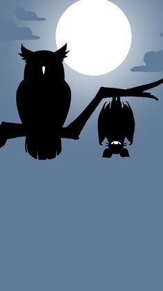 Owl Wallpaper, Paper Owls, Night Owl, Cover Photos, Celestial, Outdoor, Outdoors, Outdoor Games, The Great Outdoors