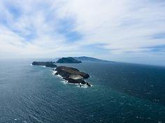 Channel Islands National Park / WTK Photography, via Flickr
