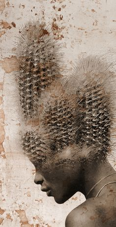 The conceit is an interesting one, and the color choices are thematically well-chosen and aesthetically executed but the meeting between the cactus and the scalp is fairly obvious. The symbolism is either not there or is easily lost on the viewer.