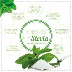BENEFICIOS aunque se dice que hasta no tener investigaciones q respalden la bioseguridad del consumo de Stevia, se aconseja consumirla moderadamente y elegir su variedad natural de origen boliviano o paraguayo por ser más dulces, y tener cuidado con los preparados sintéticos de laboratorios.