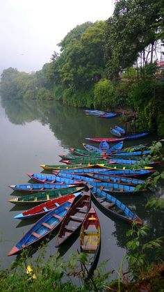 Boats in Pokhara , Nepal