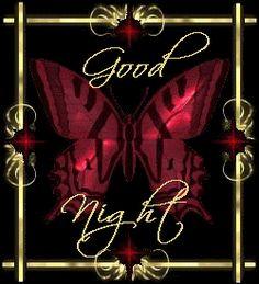 good night butterfly