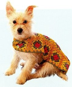 Canine chic… Made from granny squares, this little pooch poncho is made up of 14 squares arranged in three rows, with straps to fasten under tummy and neck. Dog Sweater Pattern, Crochet Dog Sweater, Crochet Pet, Crochet Dog Patterns, Granny Square Crochet Pattern, Small Dog Coats, Dog Best Friend, Dog Items, Dog Jacket