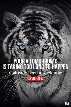 Your Tomorrow Is Taking Too Long To Happen