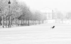 Lost in Paris   By Ricardas Jarmalavicius, 2007   Best Black and White Photography Tuileries Travel Chair Lonely Romantic Square