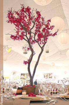 Manzanita branch wedding centerpiece with red orchids ; )