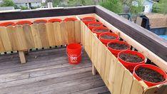 The Amateur Sage: Building a Rain Gutter Grow System Bucket Gardening, Container Gardening, Garden Boxes, Garden Planters, Backyard Projects, Garden Projects, Huerta En Casa Ideas, Farm Gardens, Outdoor Gardens