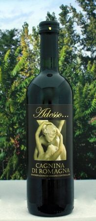 Cagnina Di Romagna Adesso  ($9.64)    Sexy label, sweet red wine = the perfect pairing for Valentine's Day