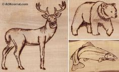 FREE PRIMITIVE BEAR PATTERNS TO PAINT ON WOOD | Wildlife Patterns; Wood Burning, Painting, Crafts