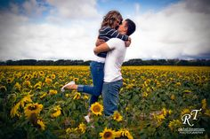 A sunflower field is a wonderful place for engagement photos!  Looking for more photos like this? Check out my official Pinterest page! http://www.pinterest.com/racheltorgphoto/