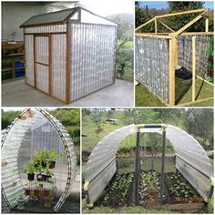 Plastic+Bottle+Greenhouse