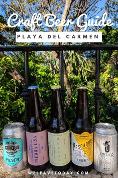 In the last couple of years, craft beer has been making its way into popular tourist destinations in Mexico, like Playa Del Carmen, Tulum and Cancun. Cancun, Tulum, Craft Beer, Beer Bottle, Drinking, Destinations, Mexico, Wanderlust, Around The Worlds