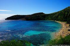 アメリカ ハワイ 自然保護区「ハナウマ湾」の美しいビーチ