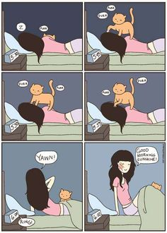 Illustrated Feline Funnies - 'Cat vs Human' is a Webcomic Documenting Cat Owner Woes (GALLERY)