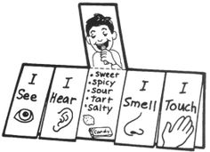 5 senses flip chart