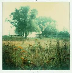 Polaroids by Andrei Tarkovsky from Bright, bright day, 2007