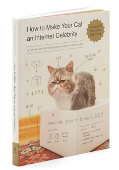 How to Make Your Cat an Internet Celebrity ($13)