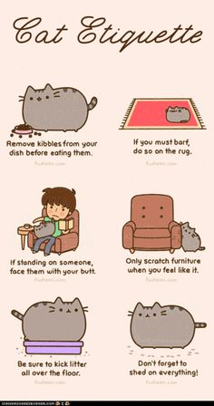 Cat Etiquette #pusheen