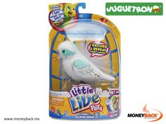 LITTLE LIVE PETS BIRD es la manera perfecta de tener tu propia ave como mascota! Responderá a un toque, cantará y silbará sólo para ti. Cuanto más juegues con él más alegre estará, incluso te silbará una melodía especial. Compra en juguetes en Juguetron México ¡y obtén una devolución de impuestos por tus compras! #toys