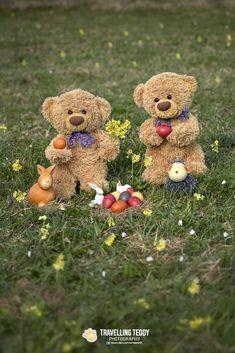 Teddy Hermann, Cute Love Wallpapers, Love Bear, Daddys Little, Cute Teddy Bears, Cute Little Animals, Cute Quotes, Dolls, Pets