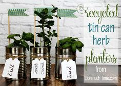 upcycled tin can herb planters, crafts, gardening, repurposing upcycling Recycle Cans, Diy Cans, Diy Recycle, Spring Projects, Spring Crafts, Recycled Tin Cans, Tin Can Crafts, Fun Crafts, Herb Planters