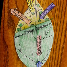 Photosynthesis foldable from the inspired classroom blog