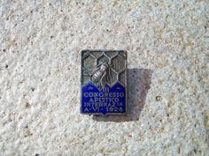 DISTINTIVO SMALTATO VIII CONGRESSO APISTICO 1928 FASCISMO JOHNSON APICOLTURA_