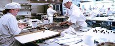 Josh graduated in 2008-  Le Cordon Bleu College of Culinary Arts in Orlando, Florida