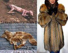 I'd rather go naked than wear fur.