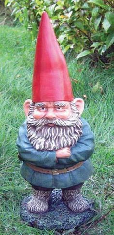Thin-belted gnomes do not believe in knee surgery. They do believe in slower skiing or sitting in antlers during stampedes.