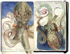 Stefano Faravelli by Sketchbooks exhibit 2007 Kunstjournal Inspiration, Sketchbook Inspiration, Artist Journal, Art Journal Pages, Sketch Journal, Art And Illustration, Moleskine, Books Art, Gcse Art Sketchbook